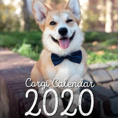 00_Corgi_Calendar_2020_Kamui_Cosplay