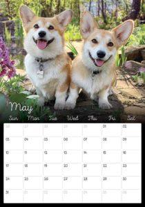 01_Corgi_Calendar_2020_Kamui_Cosplay