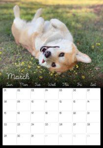 03_Corgi_Calendar_2020_Kamui_Cosplay